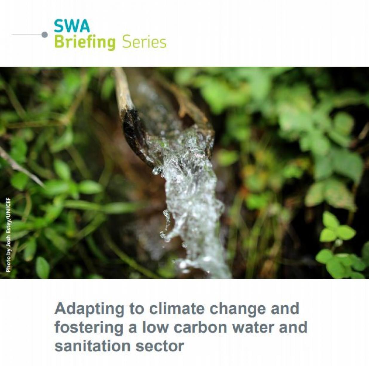 SWA Briefing Series