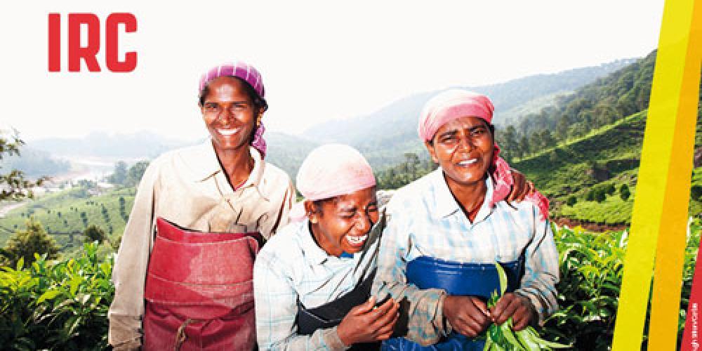 India. Portrait of three tea pickers. Image by © Hugh Sitton/Corbis