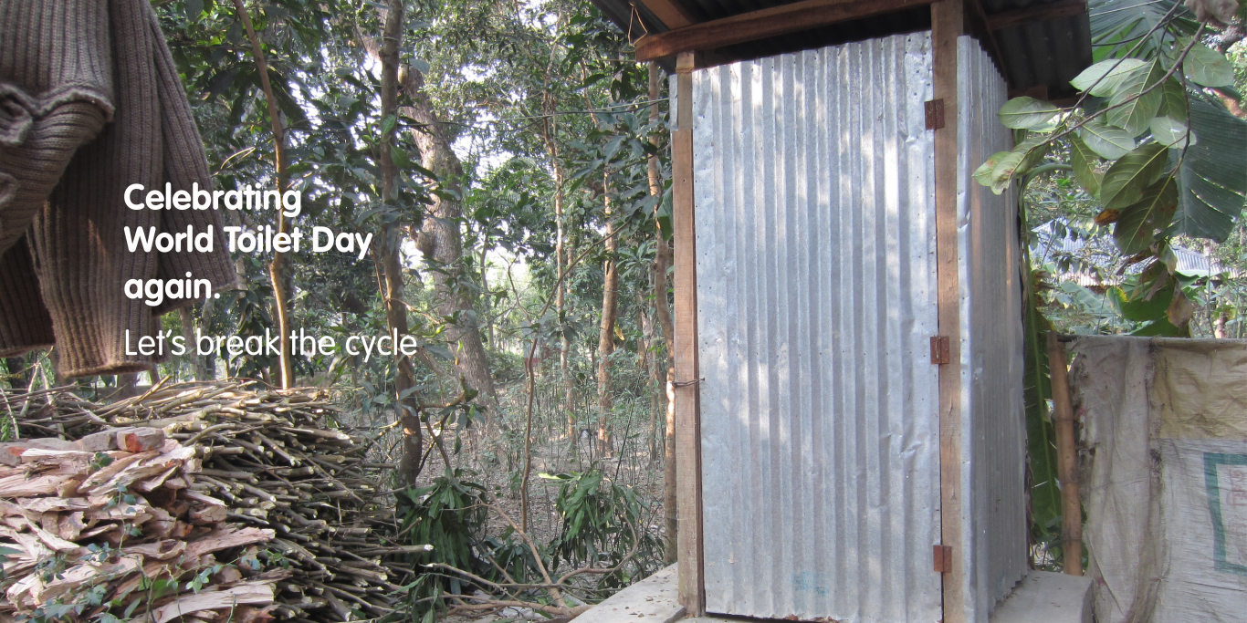 Celebrating World Toilet Day again