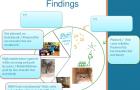 burkina findings