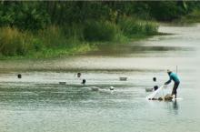 Man fishing in Bangladesh (credits: Watershed)
