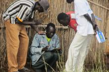 UNHCR news 2 picture