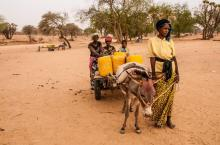 Woman fetching water in northern Burkina Faso