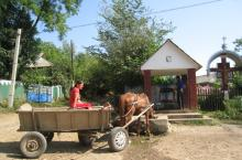 Neighbours sharing shallow well for domestic use and animals in Moldova