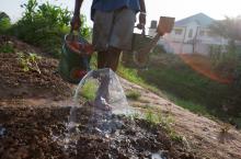 Watering in Ghana