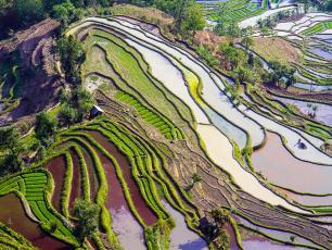 Pathways to change. Rice terraces, Yunna, China. Photo: Hoang Giang Hai (CC BY 2.0)