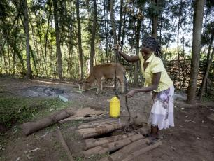 Woman lifting water from well. Photo by Petterik Wiggers Panos Pictures UK