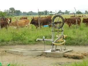 A rope pump used by a farmer in Ntoroko district for domestic consumption and animal husbandry