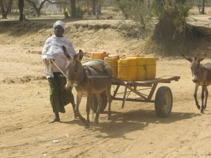 Collecting water in rural Burkina Faso