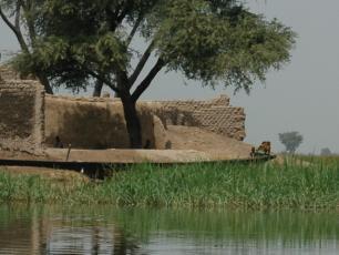 IND high water leo zwarts