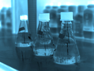 Lab.blue