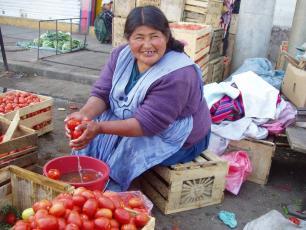 Woman washing tomatoes