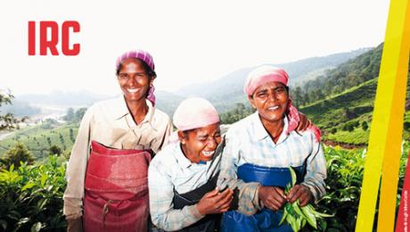 India. Portrait of three tea pickers. Image by © Hugh Sitton/Corbis