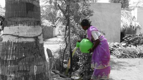 irrigating a kitchen garden