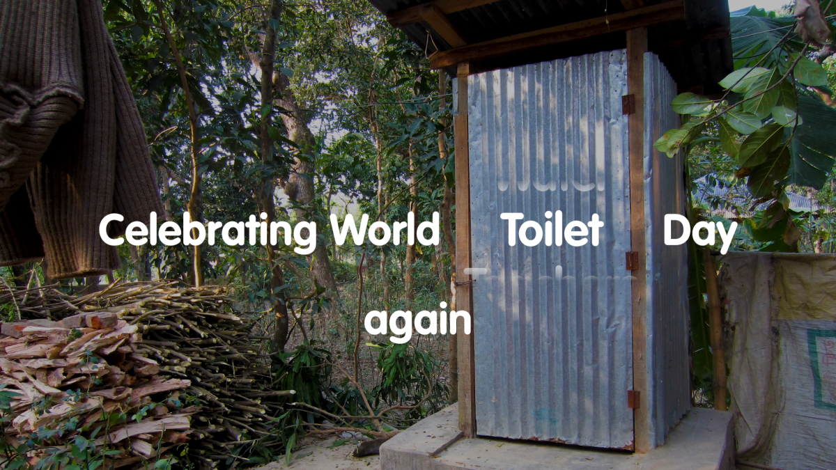 Celebrating World Toilet Day again - a toilet in Bangladesh.