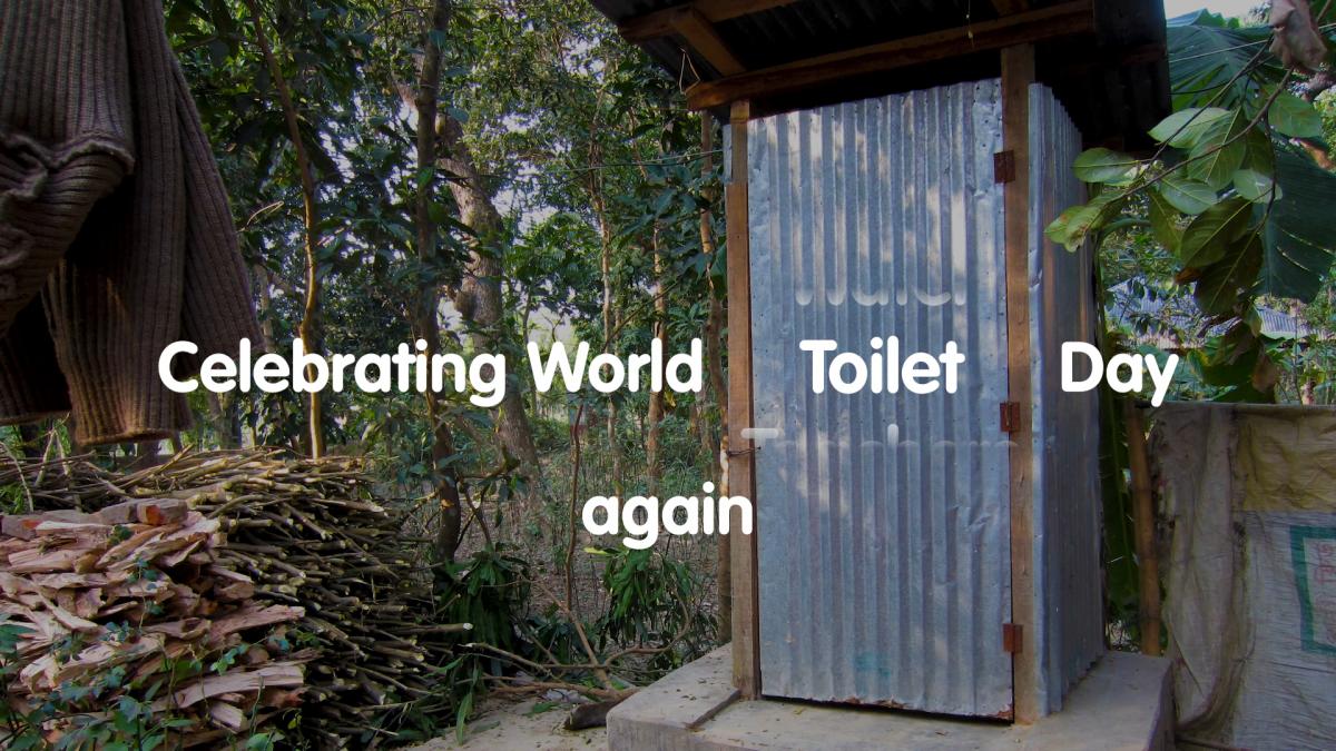 Celebrating World Toilet Day again - a toilet in Bangladesh.